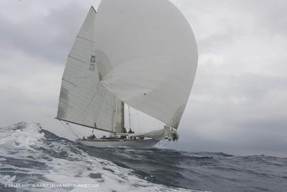 HJ6A7725.JPG