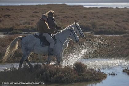 26 12 2013 - Les Saintes Maries de la Mer (FRA,13) - Horse riding at Cabanes de Cacharel