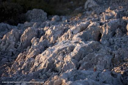 26 03 2009 - Marseille (FRA, 13) - Les Calanques - Plateau de l'Homme Mort