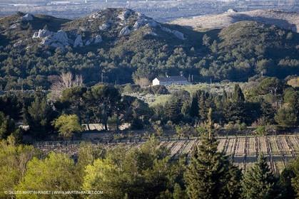 27 03 2008 - Les Baux de Provence (FRA,13) - Alpilles hills landscapes