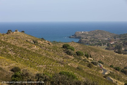 17 10 2011 - Vermeille Coast (FRA, 66) - Corbières Vineyards