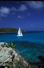 West Indies - Grenadines  - Tobago Caies