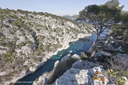 06 05 2009 - Marseille (FRA, 13) - Les Calanques - On Castelviel plateau - En Vau