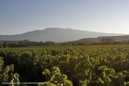 01 09 2007 - Bédouin (FRA, 84) - Mount Ventoux area
