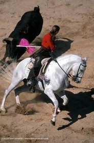 Rejon Bullfight - Rejoneadores