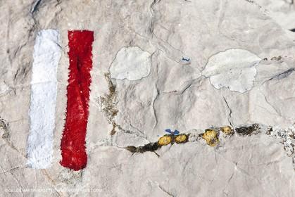 04 04 2009 - Marseille (FRA, 13) - Les Calanques - GR des crêtes de Morgiou