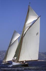 2003 Voiles du Vieux Port - Tuiga - Moonbeam