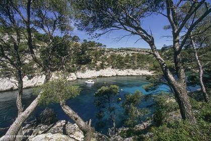 France, Provence, Les Calanques & Iles de Marseille, port Pin