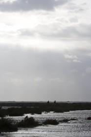 03 01 2008 - Les Saintes Maries de la Mer (FRA, 13)
