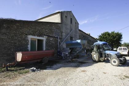 Harvest - D'or et de Gueule castle