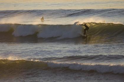 17 11 2008 - San Diego (USA, CA)