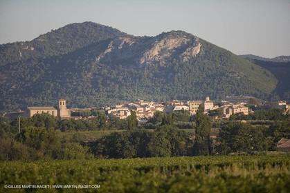 01 09 2007 - Caromb (FRA, 84) - Mount Ventoux area
