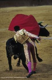 Valencia-Bullfights