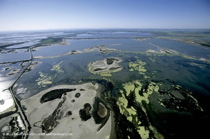 Ponds from Camargue