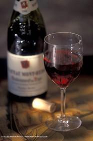 Wine - vineyards - Harvest