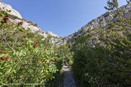 07 09 2009 - Marseille (FRA, 13) - Les Calanques - Massif de Marseilleveyre - Grand Malvallon