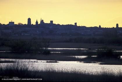 Ponds near Arles