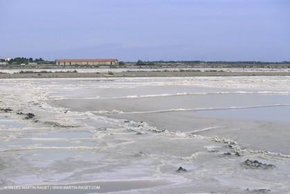 France, Provence, Camargue, Marais salant, Salted marshes
