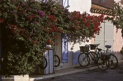 France - Var - 83 - Hyeres islands - Porquerolles