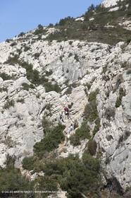 27 03 2009 - Marseille (FRA, 13) - Les Calanques - Morgiou - Path between Luminy and Morgiou