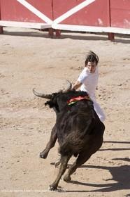 bull games