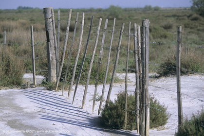 France, Provence, Camargue, Mas traditionnel de Camargue