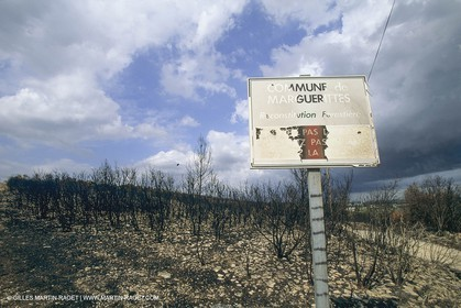 France, Languedoc Roussillon, Incendies, bushfires
