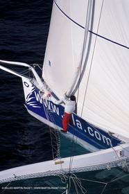 Trimaran TIM - ORMA 60 class