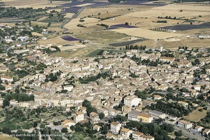 France, Provence,Valensole (FRA,04)