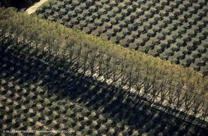 Agriculture near Eguières