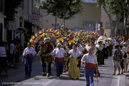 Careto ramado (Flowered chariot) traditional celebration - Saint Rémy de Provence