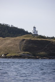01 09 2008 - San Juan Islands (WA, USA) - Killer Whales