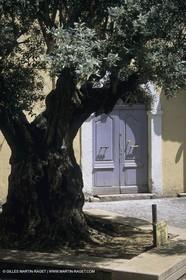 France, Provence, Fréjus-Saint-Raphaël