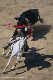 France, Provence, Traditions, Tauromachie, bull fights