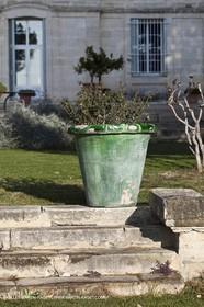 Saint Drézéry (FRA, 34), Domaine de Puech Haut