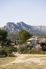 15 02 2007 - Provence - Les Alpilles