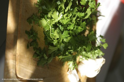 Cooking herbes from Provence - Garlic and Parsley