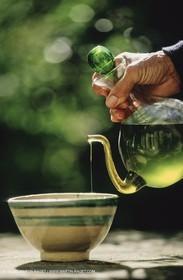 olive0108.jpg