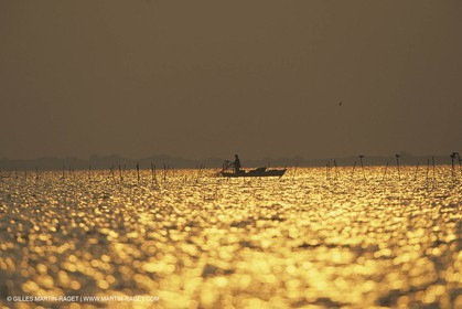 France, Provence, Camargue, Nature, Pêche, Fishing