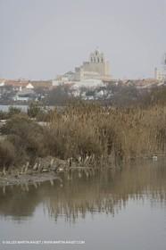 16 02 2008 - Les Saintes Maries de la mer (FRA, 13) - gardians cants