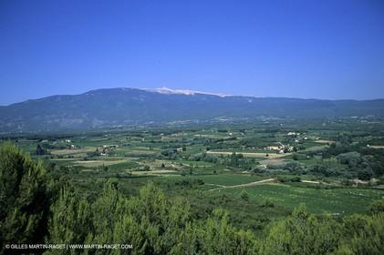 Provence - Cotes du Rhone - Mont Ventoux