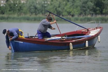 Rame, rowing classique