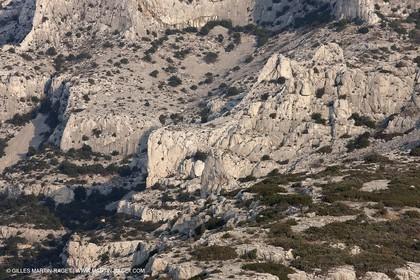 20 03 2009 - Marseille (FRA, 13) - Les Calanques - Mont Puget Est - Cirque des Petelins