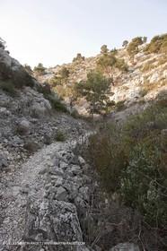 20 03 2009 - Marseille (FRA, 13) - Les Calanques - Vallon de l'oule