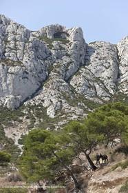 29 07 2009 - Marseille (FRA, 13) - Les Calanques