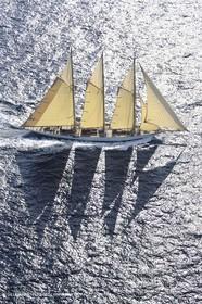 Sailing, Classic yachts, Nioulargue 1992,  Saint-Tropez (FRA,83)
