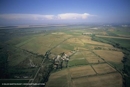 France, Provence, Plaine de La Crau