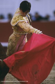 France, Provence, Traditions, tauromachie,