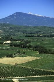 Provence - Mont Ventoux