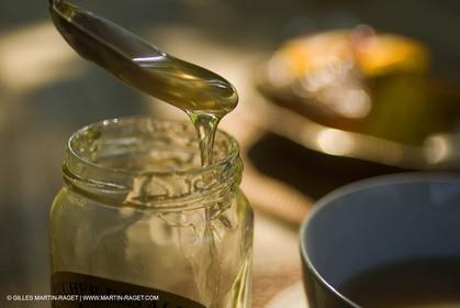 113 08 2007 - Saint Etienne du Grès (FRA - 13) - Honey and bees